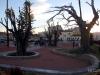 Santomera_parque_manolo_jardin_35